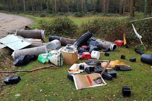 Cannabis factory dumped at New Forest beauty spot