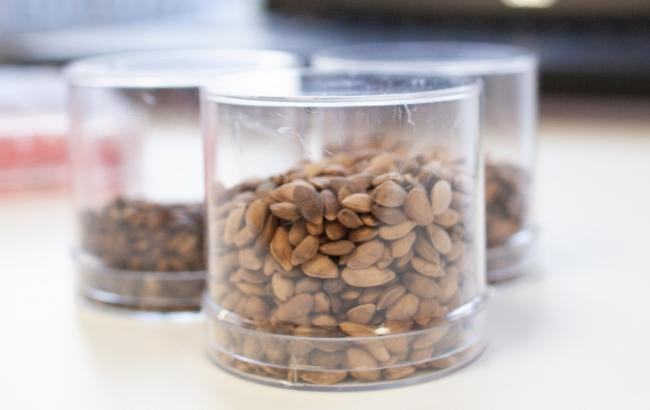 Scots seed stock solutions secure R&D funding