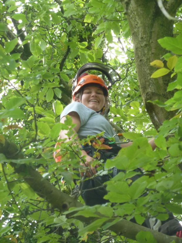 Forestry Journal: Ashli Jenkins is the first female climbing arborist I have had the pleasure to meet and feature in an article for essentialARB.