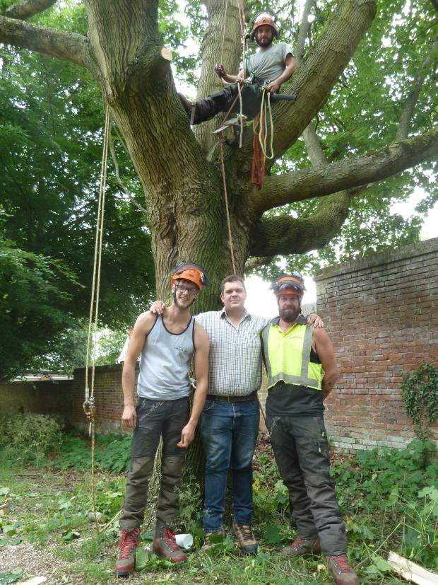 Forestry Journal: Arborcare team working on the roadside Norway maple. (l-r) Ryan Skipper, Brian Cole (project manager), Brad Nicholls. In the tree is Sam Arnold.