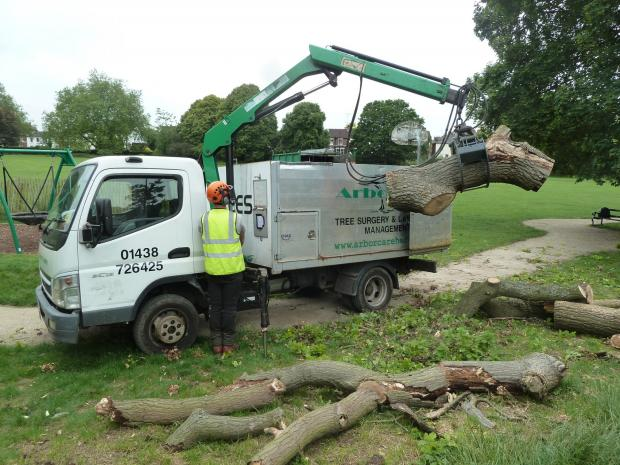 Forestry Journal: Arborcare's Mitsubishi grab truck fitted with HMF crane in action lifting oak logs at Victoria Playing Field.