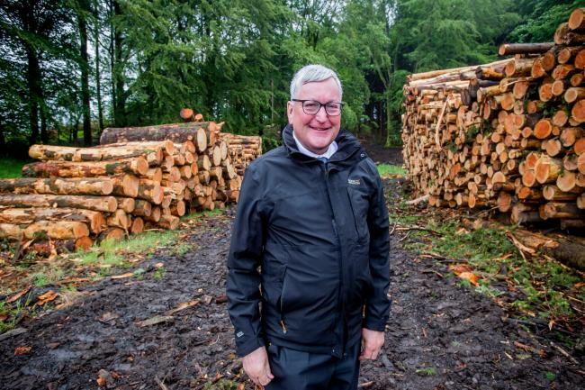 Scots tree planting figures 'outstanding result'