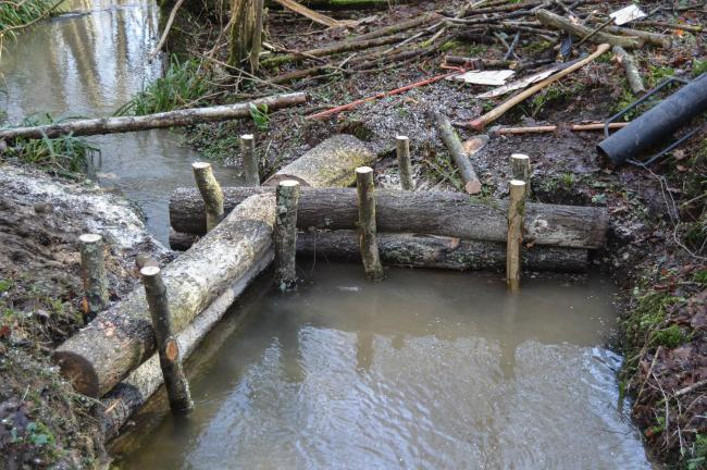 Natural flood prevention in Tudeley Woods