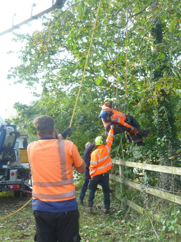 Forestry Journal: Ground crews assist in the final stages.