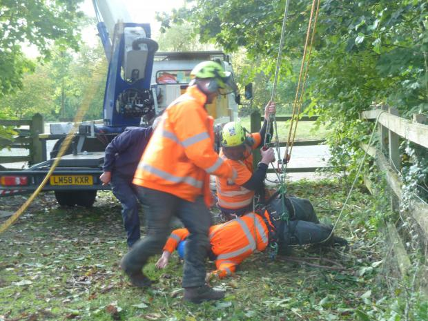 Forestry Journal: Casualty safely on the ground.