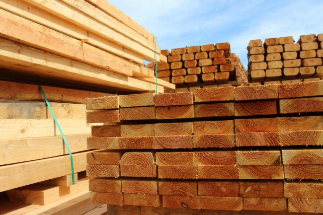 Welsh forestry businesses urged to have say on timber proposals