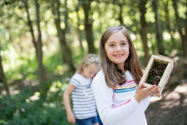 Enjoy the great outdoors during half term at the National Memorial Arboretum